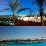 Отзывы: в Египет, Шарм-эль-Шейх. Отель Rehana Royal Beach. 5*
