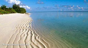 Две недели на жарких пляжах ГОА - выгодное предновогоднее предложение (7173-07)