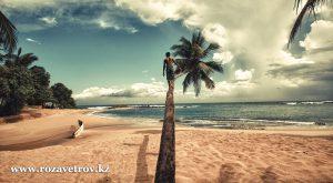 Где провести последние дни уходящего лета - экзотика острова Шри-Ланка (6706-07)