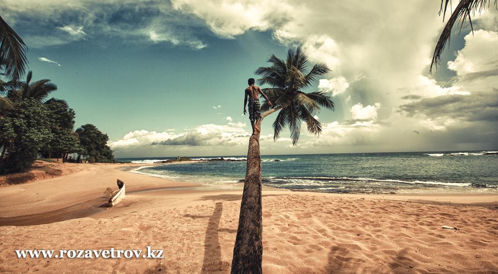 Туры 2020 - 11 дней отдыха на Шри-Ланке в рассрочку (7148-07)