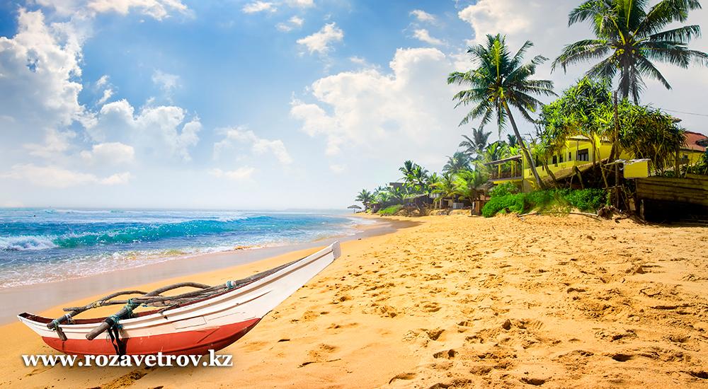 Экзотика острова Шри-Ланка - туры для искушенных туристов (6773-07)
