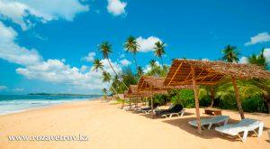 Изумительный пляжный отдых на острове Шри-Ланка - туры в рассрочку на 12 месяцев (7353