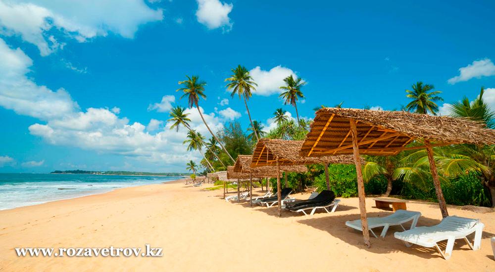 Изумительный пляжный отдых на острове Шри-Ланка - туры в рассрочку на 12 месяцев (7353-07)