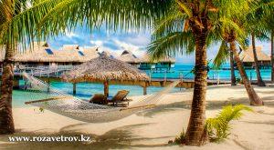 Завтра на пляж - горящие туры в Египет, 11 дней отдыха в Шарм-эль-Шейхе (6445-07)