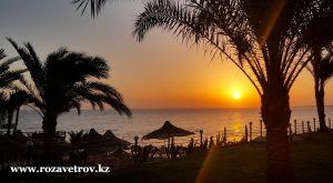 Туры в Египет по выгодным ценам - акция «FORTUNA» на отели Шарм-эль-Шейха (7171prm-07)