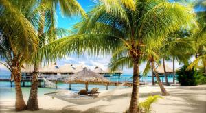 Доминикана — это идеальное место для проведения свадебного путешествия (4889-02)