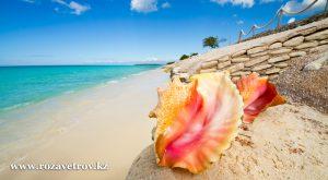 13 дней в Доминикане - отели 5*, качественный отдых в рассрочку и без переплат (7094-22)