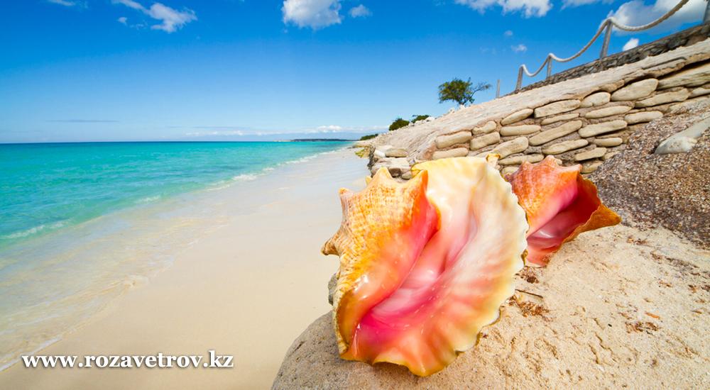 11 дней отдыха на Карибах - шикарные пляжи Доминиканы, тур в рассрочку (7328-22)