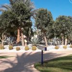 Отзывы: в Египет, Шарм эль Шейх. Отель Nubian Village 5*