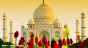 Индия - экскурсионные туры. Окунитесь в уникальную и древнейшую культуру Индии (5371