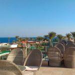 Отзывы: в Египет, Шарм-эль-Шейх. Отель Shores Amphoras Resort 5*