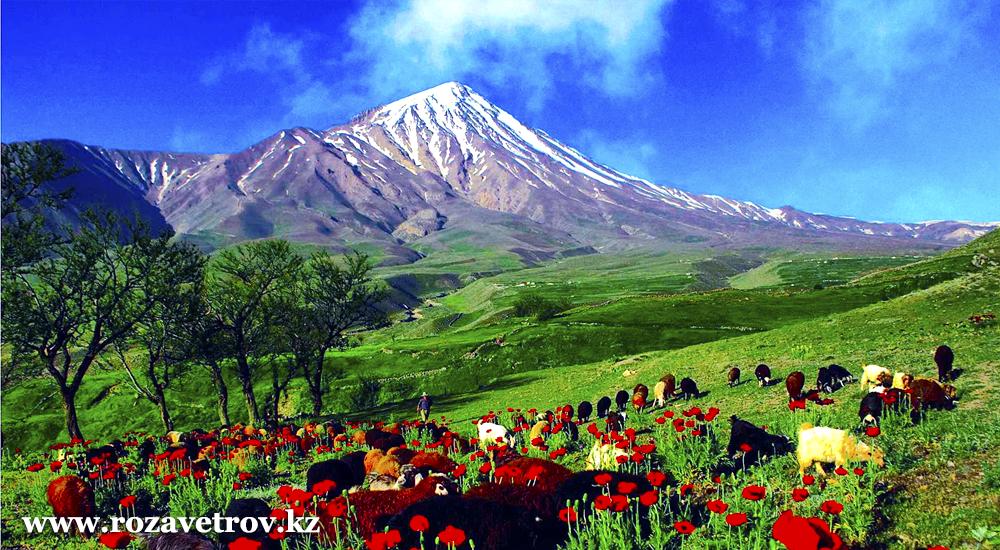 Туры в Грузию, отели Тбилиси из Алматы на 04 февраля (5555-07)