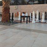 Отзывы: в ОАЭ, Рас-аль-Хайма. Отель DoubleTree by Hilton Resort & Spa Marjan Island 5*