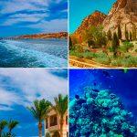 Отзывы: в Египет, Шарм-эль-Шейх. Отель Rehana Royal Beach Resort, Aqua Park & Spa 5*