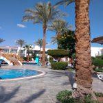 Отзывы: в Египет, Шарм-эль-Шейх. Отель Panorama Naama Heights 4*