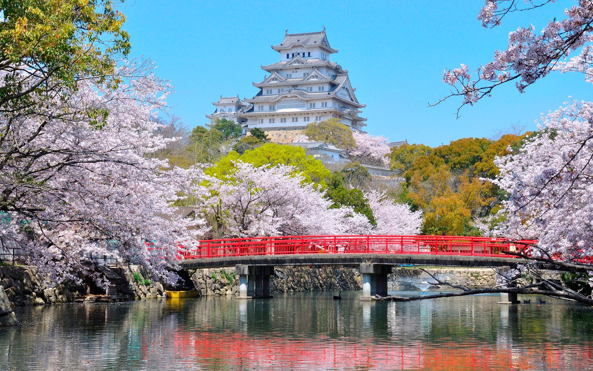 Туры в Японию из Алматы. Отдых в Японии из Алматы
