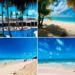 Отзывы: в Доминикану, Пунта-Кана. Отель Occidental Punta Cana 5 *