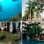 Отзывы: в Таиланд, Паттайя. Отель Sea Breeze Jomtien Resort 3*